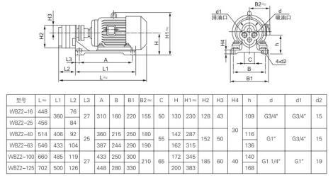 WBZ型卧式齿轮泵装置生产